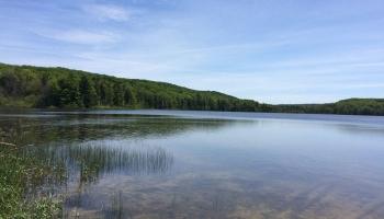bass-lake-kayak-tour-02