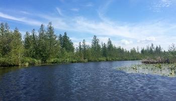 cedar-river-preserve-01